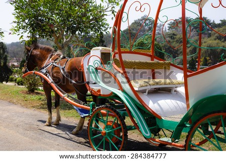 Amish Horse and Carriage - stock photo