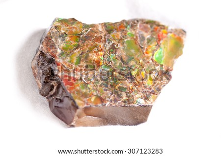 ammonite shard sample, colorful crystal fossil sections - stock photo