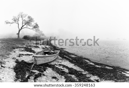 An abandoned fishing boat left on the beach. Black and white coastal scene with silhouetted tree and old boat. Bailey Island, Maine, USA - stock photo