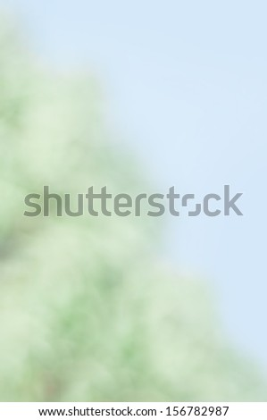 An abstract spring background with bokeh effects. - stock photo