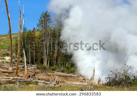 An active geyser in Yellowstone National Park - stock photo