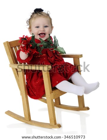 An adorable baby girl happily sitting in a rocking chair and holding poinsettias while all dressed up for Christmas.  On a white background. - stock photo