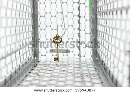 An antique brass key on a hook in a rat trap cage. A symbol of key success trap in a business goal that attempt or trying to achieve, typically one that is unsuccessful in a wrong way or bad decision. - stock photo