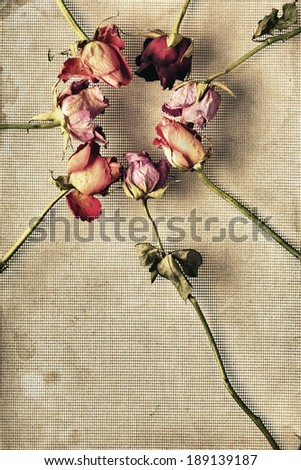 An arrangement of dried flowers in a circle off set from the center. - stock photo