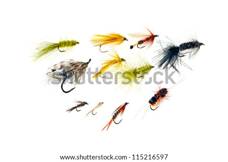 An assortment of fishing flies - stock photo
