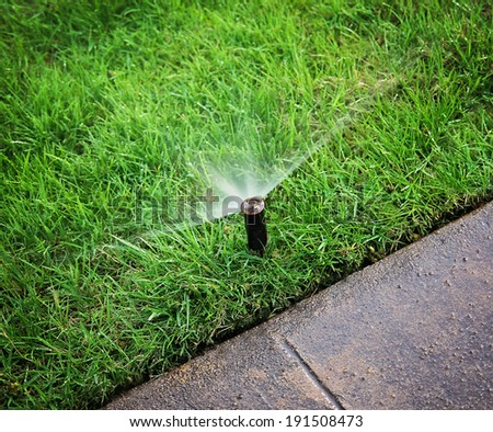 an automatic sprinkler watering grass  - stock photo