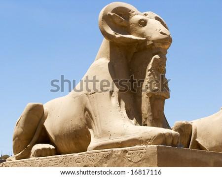 An egyptian ram from Karnak Temple (Luxor) - stock photo