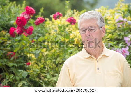 An elderly man is pensive and looking down in front of a beautiful rose background - stock photo