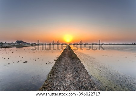 An empty dirt road though the rice field plantation towards the setting sun in rural Vietnam. Idyllic sunset on dusty road in the countryside. A pagoda is available on the left. Agriculture, religious - stock photo