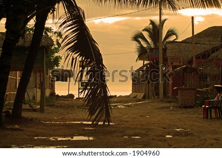 An empty street leading to a tropical beach (South America) - stock photo