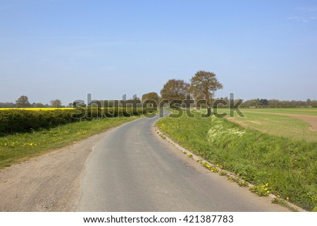 an english country lane winding through wheat and oilseed rape crops under a blue sky in springtime - stock photo