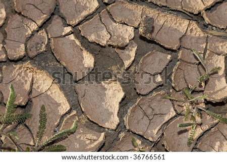 An environmental climate change concept shot of cracked dry earth. - stock photo