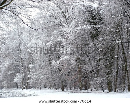 An Ice Cold Winter Day - stock photo