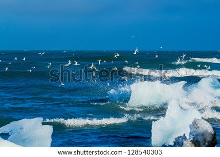 An Iceberg Being Broken By The Waves. Beautiful beach in the South of Iceland is full of icebergs from glaciers. - stock photo