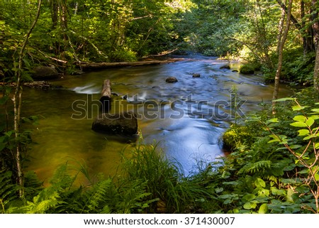An idyllic small trout stream in northern Wisconsin - stock photo