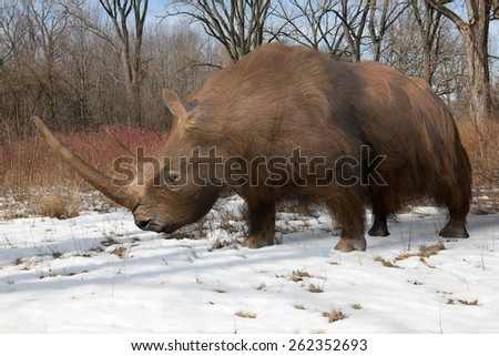 An illustration of the extinct Woolly Rhinoceros slowing making his way through an Ice Age forest. The woolly rhinoceros was a member of the Pleistocene megafauna, common throughout Europe and Asia.  - stock photo