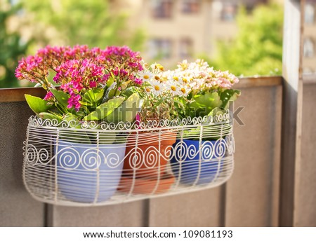 An image of a balcony flower box filled with plant-pots - stock photo