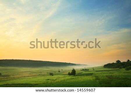 An image of a green foggy field - stock photo