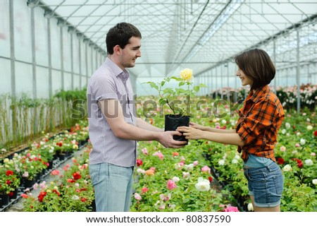 An image of a man giving a flower to woman - stock photo