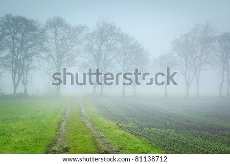 An image of a nice autumn forest way - stock photo