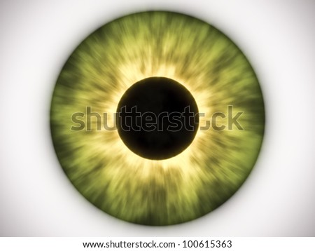 An image of a nice green eye - stock photo