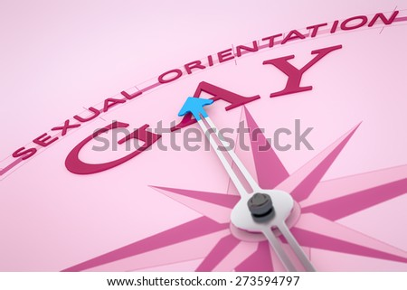 An image of a nice pink compass with the word sexual orientation gay - stock photo
