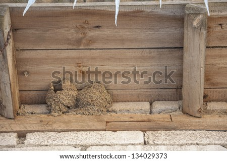 An image of bird nest under barn roof - stock photo