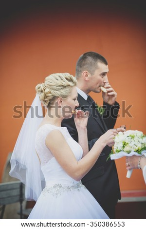an image of bread and salt with wedding - stock photo