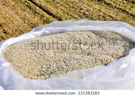 an image of nitrogenous fertilizer - stock photo