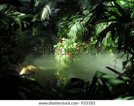 An indoor model rainforest - stock photo