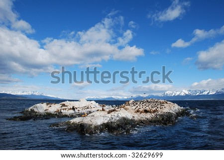 An island in the gulf of Ushuaia, Patagonia, Argentina - stock photo