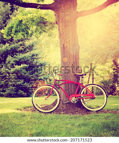 an old bike leaning against a tree toned with a retro vintage instagram filter  - stock photo