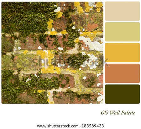 An old brick wall covered in moss and lichen, in a colour palette with complimentary colour swatches - stock photo