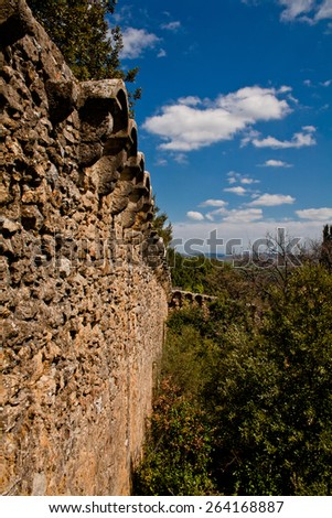 An old medieval wall and trees in San Quirico d'Orcia - stock photo