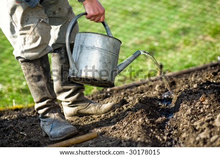 An old peasant with a watering-can  watering the soil in his kitchen garden - stock photo