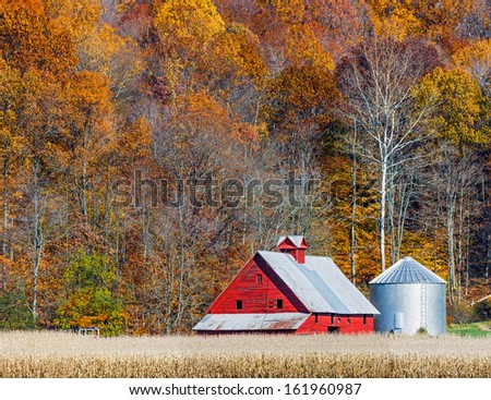 An old red barn stands between a cornfield ready for harvest and a hillside blazing with autumn color in rural Indiana. - stock photo