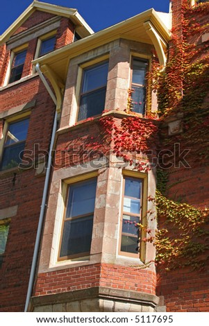 An older university brick building covered with vivid creeping vines. - stock photo