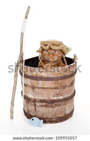 An Orange Tabby Cat Wearing a Crocheted Fisherman Hat and Sitting in an Old, Weathered Wooden Bucket with a Stick Fishing Pole and Crocheted Fish. Shot in the Studio on a White Background. - stock photo