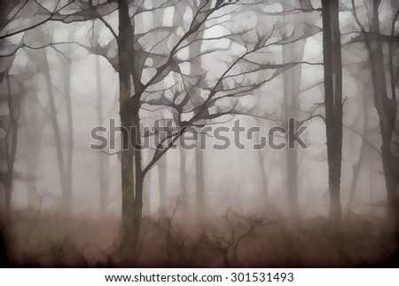 An original photograph of the foggy woods in the Poconos of Pennsylvania transformed into a digital illustration - stock photo