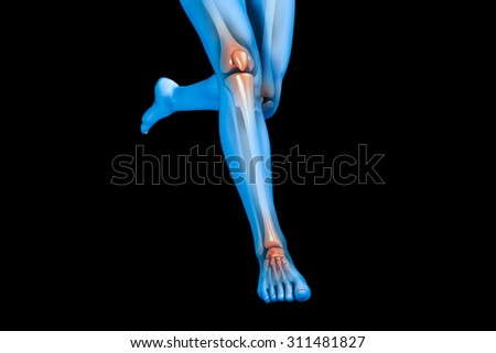 An x-ray image of a pair of legs.  - stock photo