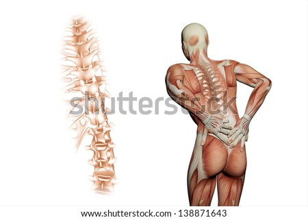anatomical vision back pain - stock photo