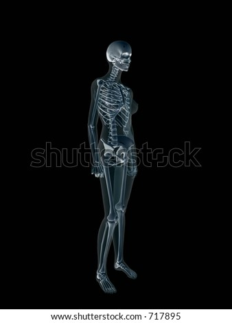 Anatomically correct Xray, x-ray of the human female body, woman. 3D render, illustration over black. View from left.  Different body parts can be requested via forum. - stock photo