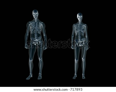Anatomically correct Xray, x-ray of the human male body, man and woman. 3D render, illustration over black. View from front.  Different body parts can be requested via forum. - stock photo