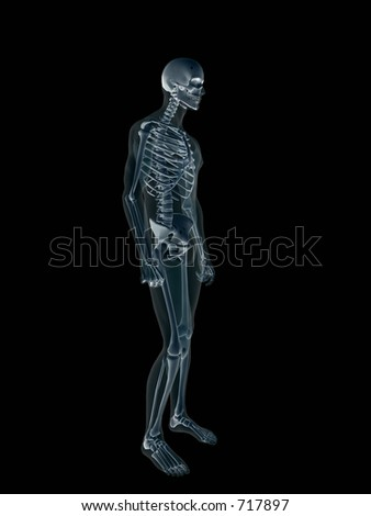 Anatomically correct Xray, x-ray of the human male body, man and woman. 3D render, illustration over black. View from left.  Different body parts can be requested via forum. - stock photo
