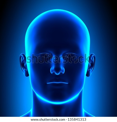 Anatomy Head - Front View - Blue concept - stock photo