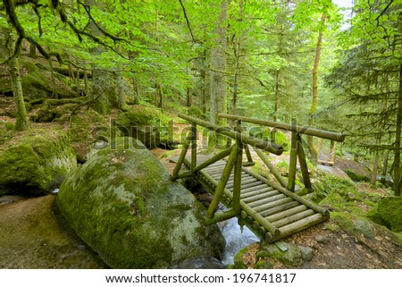 Ancient Black Forest hiking trail through the woods of Gertelbachtal, Germany - stock photo