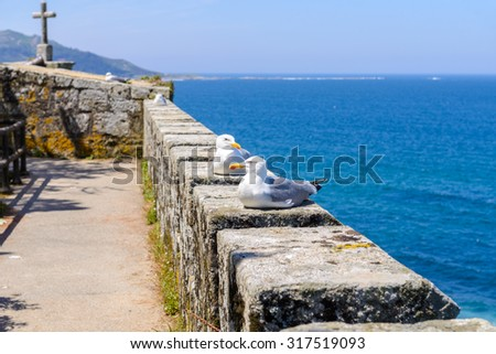 ancient fortress, Bayona, Galicia, Spain - stock photo