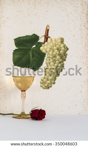 ancient glass of white wine background grape cluster decorated, romantic moment with wine and flowers rose , natural light, vertical photo - stock photo
