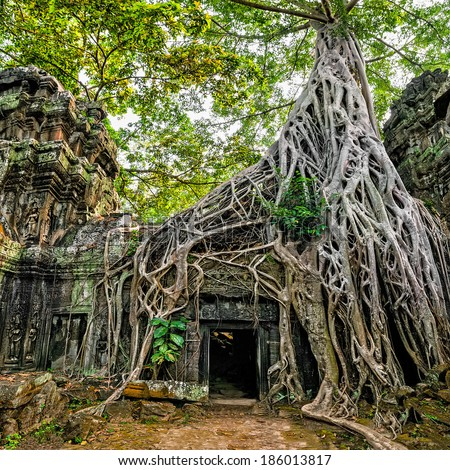 Ancient Khmer architecture. Ta Prohm temple with giant banyan tree at Angkor Wat complex, Siem Reap, Cambodia. Two images panorama - stock photo