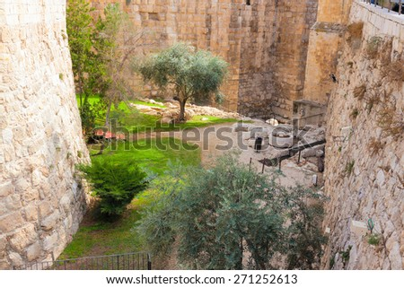 Ancient moat with plants near a tower of david, at the old city walls of Jerusalem - stock photo